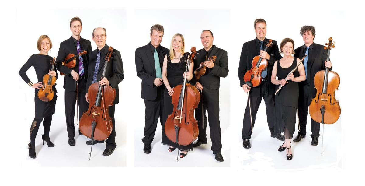 Worcester Chamber Music Society Bio